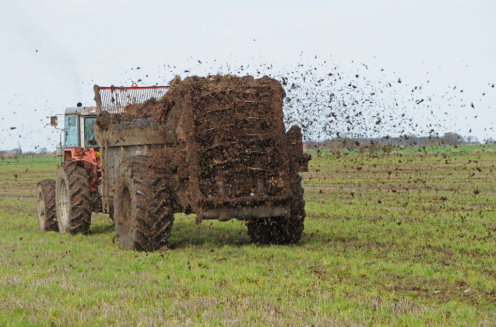 Using Nutrients from the Right Rate Gets Producers the Best Bang for Their Buck